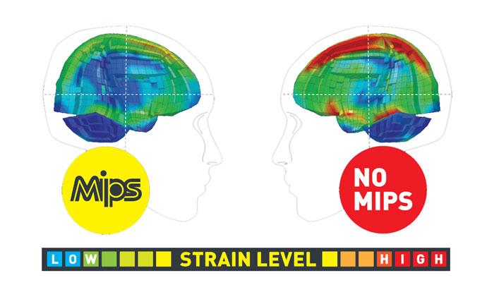 MIPS Rotational Impact